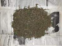 В Оренбурге и Саракташском районе борьба с наркоманией